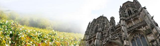 Vignes et Cathédrale de Toul